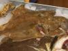 fiskekluben-rens-063