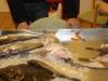fiskekluben-rens-082