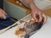 fiskekluben-rens-090